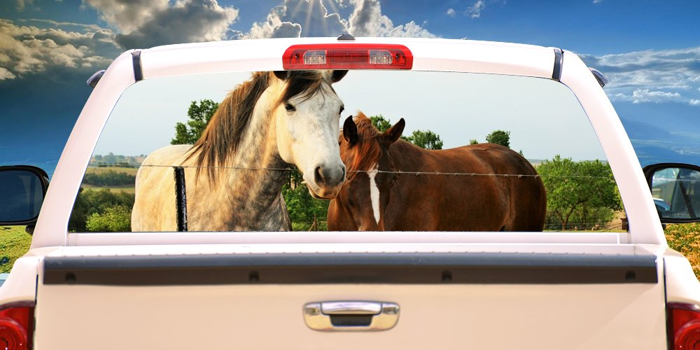 SignMission Horse Friends Rear Window Graphic Truck View Thru Vinyl Decal Back, 16'' X 54'', by SignMission