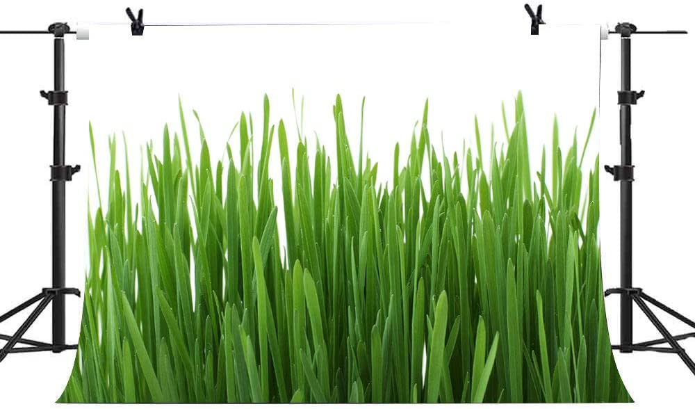 7X5FT Green Grass Backdrop Grassland Lawn Picture Background for Photography Spring Safari Party Ground Decor Outdoorsy Theme Newborn Baby Shower Lover Wedding Photo Studio Props SPGE144 LELEZ