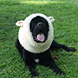 Onmygogo Funny Sheep Pet Costumes for Dog, Cute Furry Pet Wig for Halloween Christmas, Pet Clothing Accessories (Sheep, Size L)
