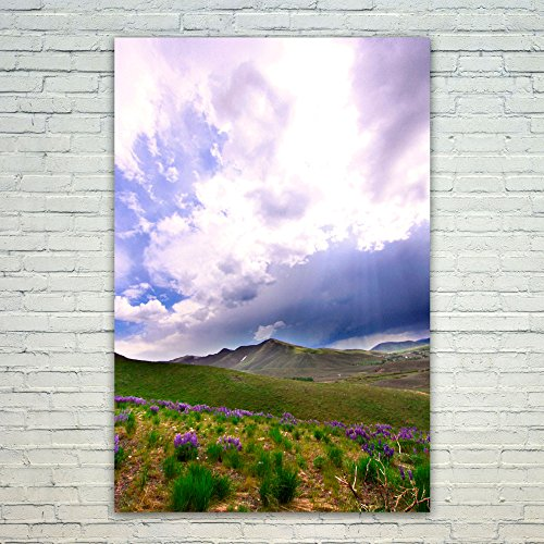 Westlake Art Landscape Grassland - 12x18 Poster Print Wall Art - Modern Picture Photography Home Decor Office Birthday Gift - Unframed 12x18 Inch (Rays Crystal Mug)