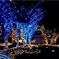 ADDCOME LED String Light 110V 10m 32.8ft LED Light 100 LED Bulbs Waterproof Fairy String Light for Outdoor Indoor Christmas Holiday Party Decoration