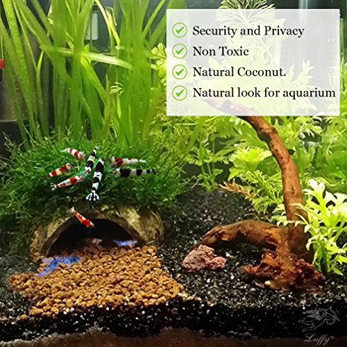 Image of SunGrow Organic Coco Shrimp Cave : Comfortable Hideout Shrimp : Perfect Breeding Area : Naturally Attractive & Non Toxic : Unique Aquarium Decoration