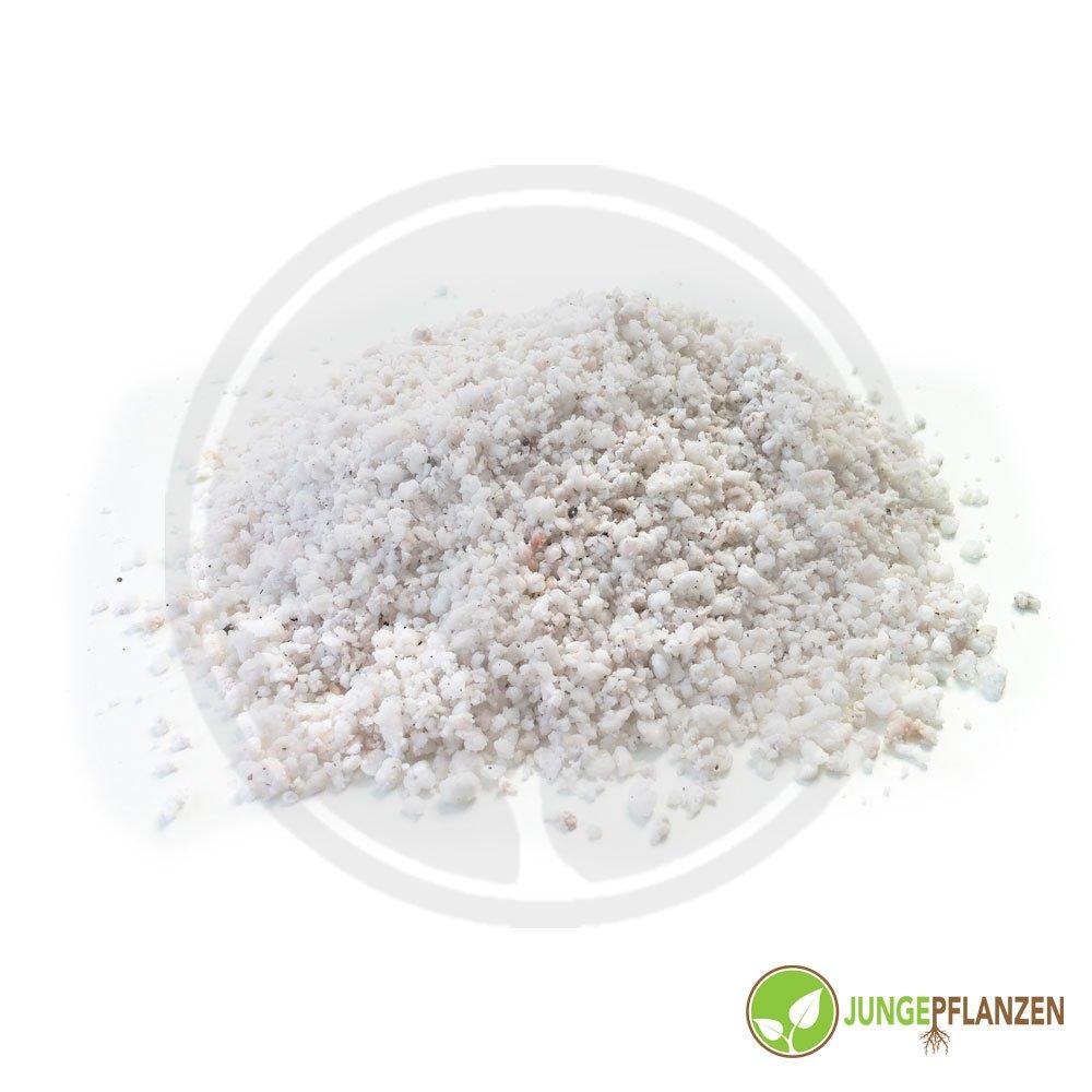 Substrate - Perlite 10 liters jungepflanzen