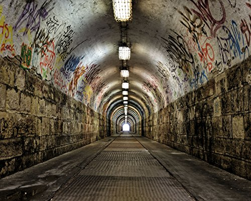 Wall Rogues WR50554 Graffiti Tunnel Wall Mural