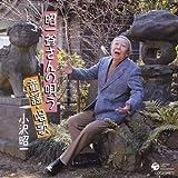 Ozawa Shoichi Teki Kokoro Doyo.Ka by Shoichi Ozawa (2008-04-22)