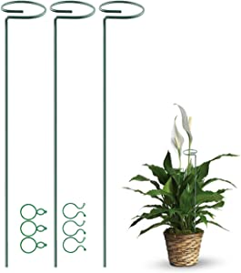 Puppy's Mom 3 Pack Plant Support Stakes, Single Stem Support Stake Garden Plant Cage Support Steel Ring with 6pcs Clips for Flowers Hydrangea, Lily, Rose, Peony, Tomato (40 cm/16 inch Long) (3pack)