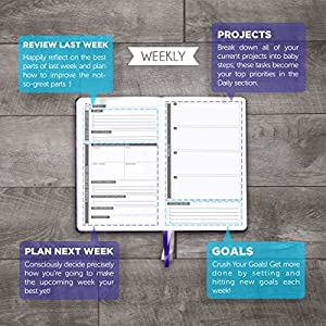 Panda Planner - PURPLE - Best Daily Calendar and Gratitude Journal to Increase Productivity, Time Management & Happiness - Hardcover, Non Dated Day - Guaranteed …