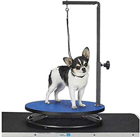 Master Equipment Small Pet Grooming Table Blue Master Equipment