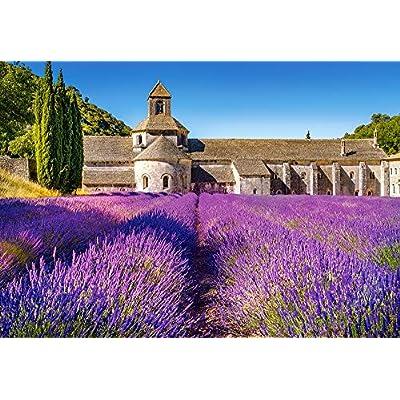 Castorland C 104284 2 Lavender Field In Provenza France Puzzle Da 1000 Pezzi