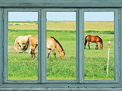 Horses in a pasture grazing on green grass Wall Mural