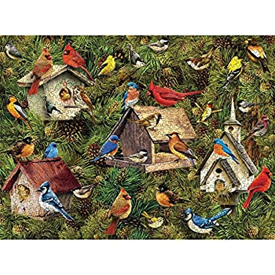 Puzzle 1000 Piece Jigsaw Puzzle for Adults,Children Puzzle Puzzle Toy Landscape Pattern Birdie: Toys & Games