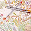 Colored Pencils 24 Coloring Pencils Professional Color Pencils for Adult Coloring Books by FUNLAVIE