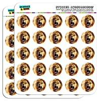 "Lion Roar Big Cat Safari 1"" Planner Calendar Scrapbooking Crafting Stickers"