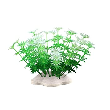 Amazon.com : Vacally 6Pcs Fish Tank Plastic Decoration Aquarium Green Plants Water Grass Fish Tank Artificial Plants 4.33 Inch : Pet Supplies