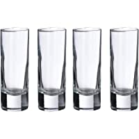 Lillian Rose Set of 4 Tall Shot Glasses