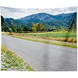 Westlake Art - Road Rural - Wall Hanging Tapestry - Picture Photography Artwork Home Decor Living Room - 68x80 Inch (02F14)