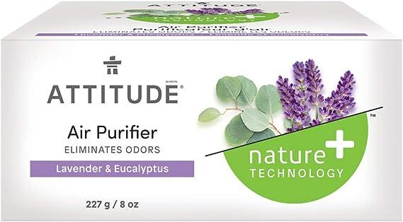 Actitude purificador de aire Eucalipto Lavanda 227 g: Amazon.es ...