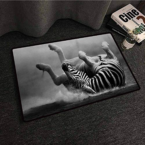DILITECK Outdoor Door mat Africa Zebra Rolling in The Dust Artistic Savage Animal Mammal Activity Eco Photo Durable W35 xL47 Black and White