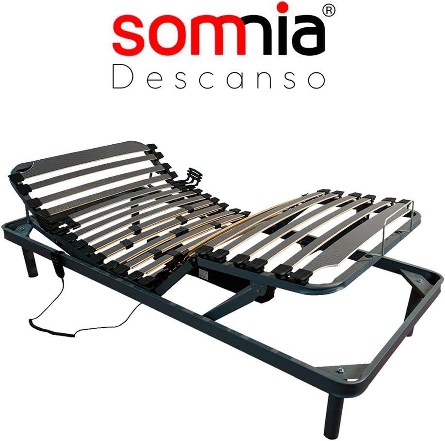 Somnia - Cama Articulada Eléctrica Artimedic   Reforzada   5 Planos   Suspensiones de Hytrel   Fabricado En España (80x180)