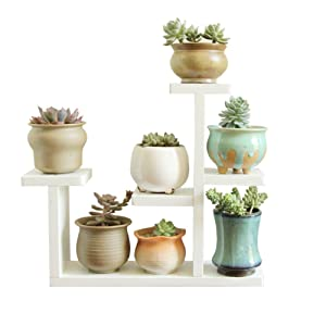 Exttlliy Wooden DIY Mini Tabletop Plant Stand Multi-layer Concise Desktop Planter Holder for Home Office Decorative (White)