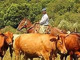 A Gaucho Gathering in Uruguay