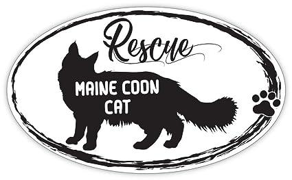 Amazon com: Lovable Petz - RESCUE MAINE COON CAT Cats Pets