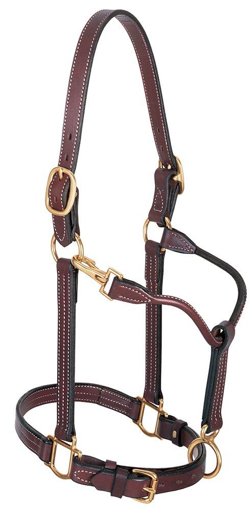 Weaver Leather 1-Inch Large Horse Stallion Track Halter