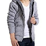 Ninasill Mens Autumn And Winter Coats Hodded Casual Hoodies Sweater Coats Blouse (L, Gray)