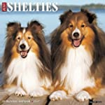 Just Shelties 2017 Wall Calendar