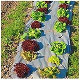 Dewitt NAT340 3' X 40' Garden Weed Barrier