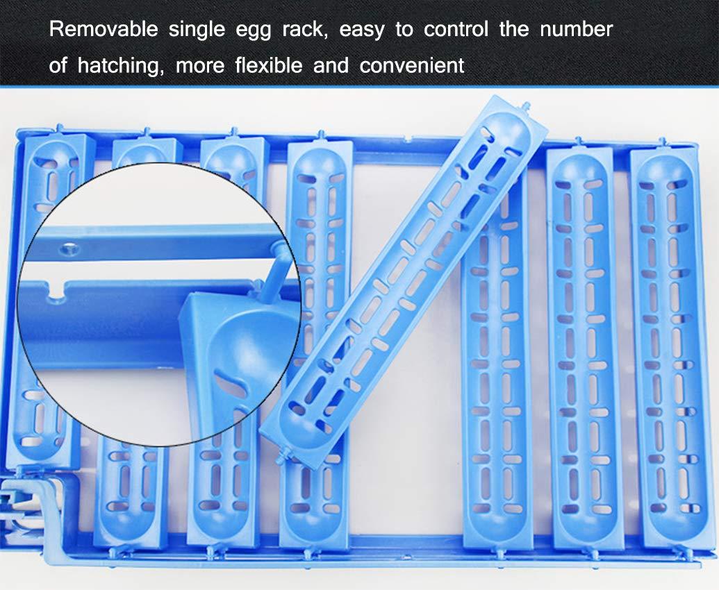FOTEE Incubatore Incubatore Incubatore Uova Gallina, Digitale Automatica 78 pz Intelligente con Eggs Turner Doppio Potere Hatcher di pollame per polli Anatre Uccelli D'Oca,blu_57x37x32cm c607a0