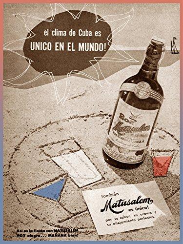 Rum Matusalem - 24