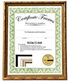 8.5x11 or 11x8.5 inch Professional Decorative Gold Leaf Business License Certificate Frame, Self Standing Portrait or Landscape with Wall Hanger