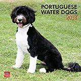 Portuguese Water Dogs 2013 Calendar
