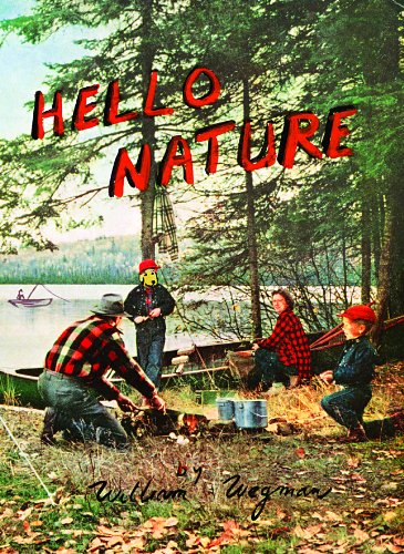 Hello Nature: How to Draw, Paint, Cook, And Find Your Way