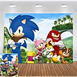 Cartoon Hedgehog Palm Mountain Scene Photo Background Baby Shower Supplies Sonic Heroes Photography Backdrop for Children Birthday Party Banner Decorations Vinyl 5x3ft Photo Booth