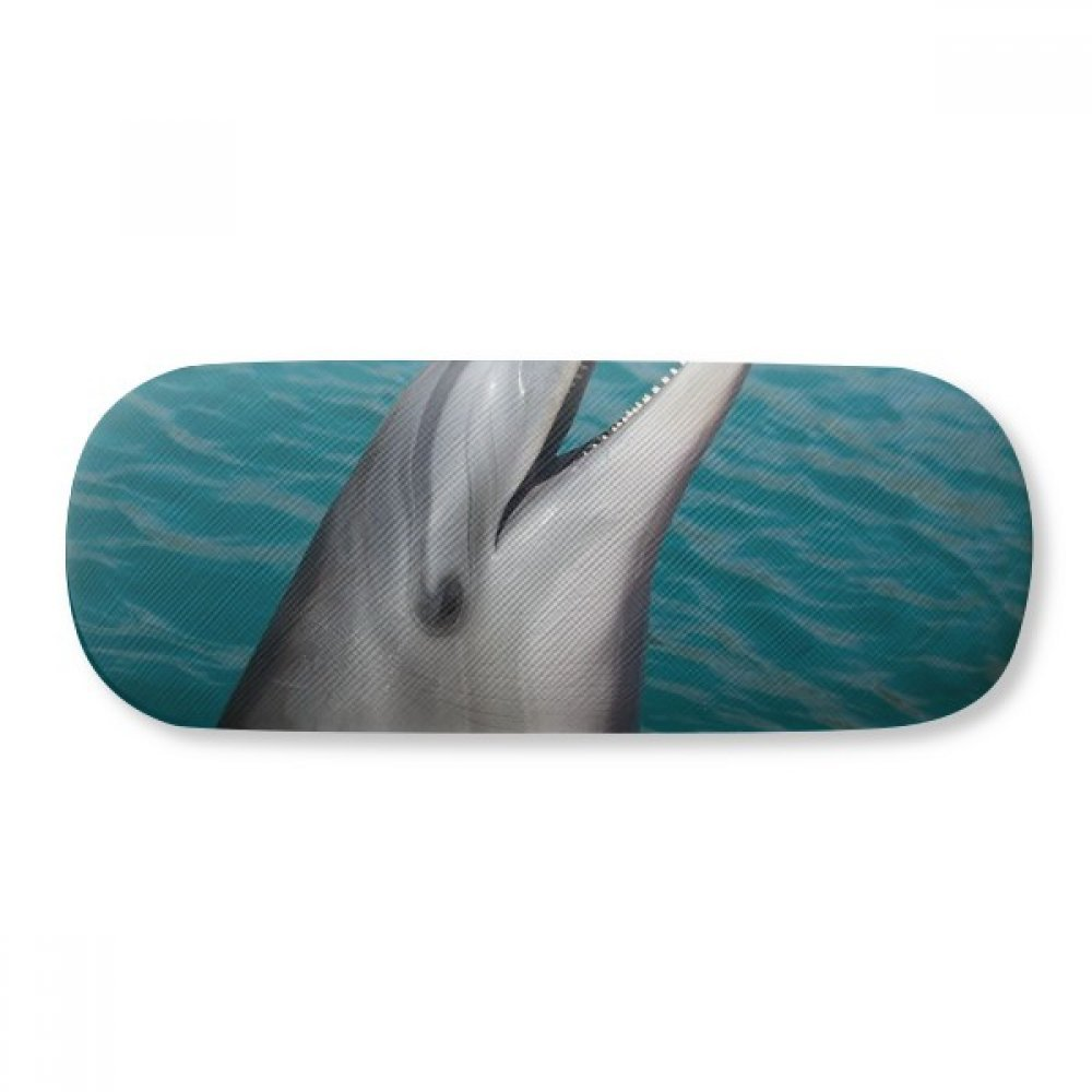 Ocean Water Dolphin Science Nature Picture Glasses Case Eyeglasses Clam Shell Holder Storage Box