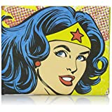 Dynomighty Men's Mighty Wallet Wonder Woman Vintage, Multi, One Size