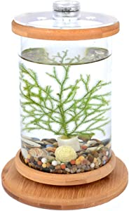 Norgail Creative Rotary Aquarium Mini Small Fish Tank with LED Lighting Desktop Bowl Round Aquarium Decoration for Home Living Room Bedroom Office Spinning Bamboo Rack