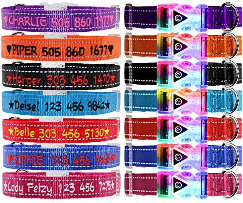FunTags Personalized LED Dog Collar, Custom Collars Embroidered with Pet Name & Phone Number, Waterproof Flashing Buckle, Reflective Nylon Collars