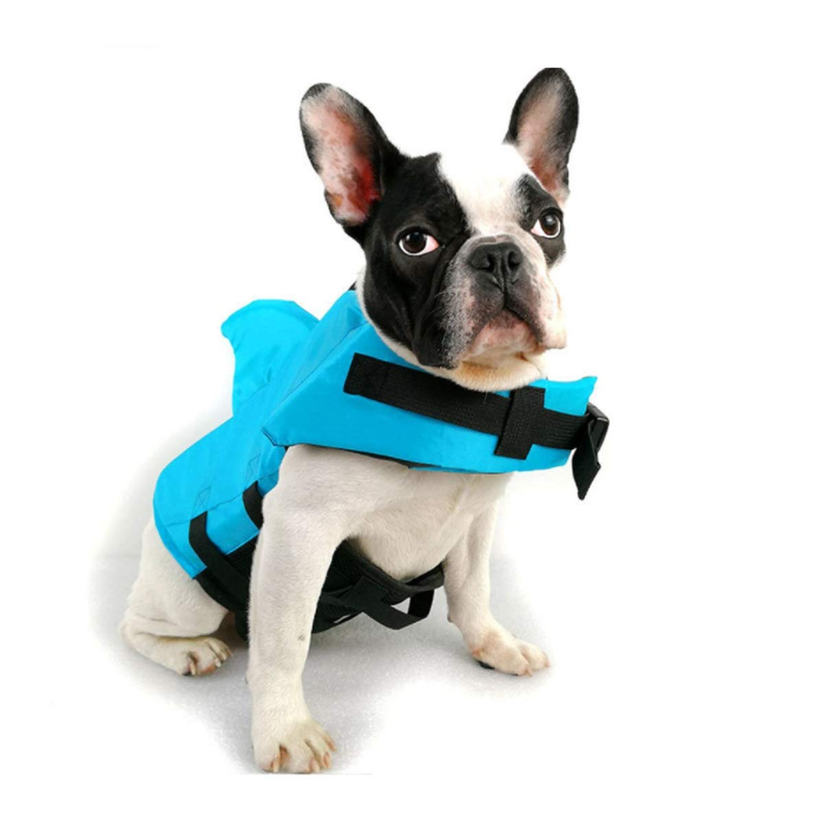 bluee M bluee M Large and Small Dog Pet Swimsuit, Dog Swimsuit, Professional Life Jacket (color   bluee, Size   M)