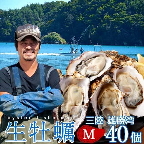 牡蠣 生がき[M]40個 生牡蠣 殻付き 生食用 宮城県産 雄勝湾 漁師直送 生ガキ 焼きカキ BBQバーベキュー