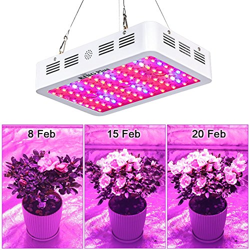 King Plus 1000w LED Grow Light Double Chips Full Spectrum with UV...
