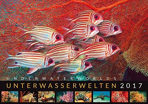 Unterwasserwelten 2017: Underwater Worlds 2017