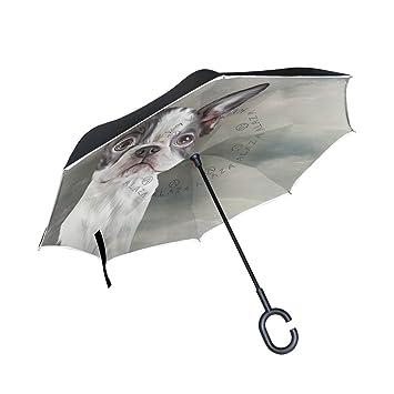 mydaily doble capa paraguas invertido coches Reverse paraguas Boston Terrier Perro Vintage resistente al viento UV