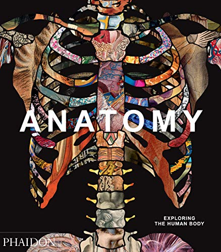 Anatomy: exploring the human body (Explorer) por Phaidon Editors