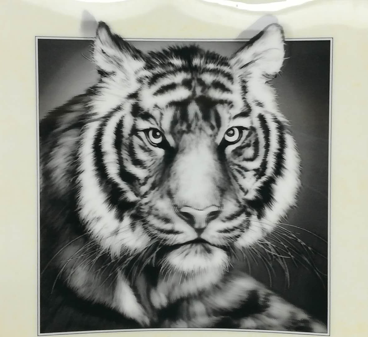 437c803a7 Nimble House ® ™ Lenticular 3D Home Decoration Beautiful Black & White Tiger  Portrait Painting (40X40CM) Without Frame: Amazon.in: Home & Kitchen