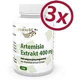 Vita World Pack di 3 Estratto di Artemisia annua (30:1) 400mg 3 x 100 Capsule Assenzio Secco Made in Germany