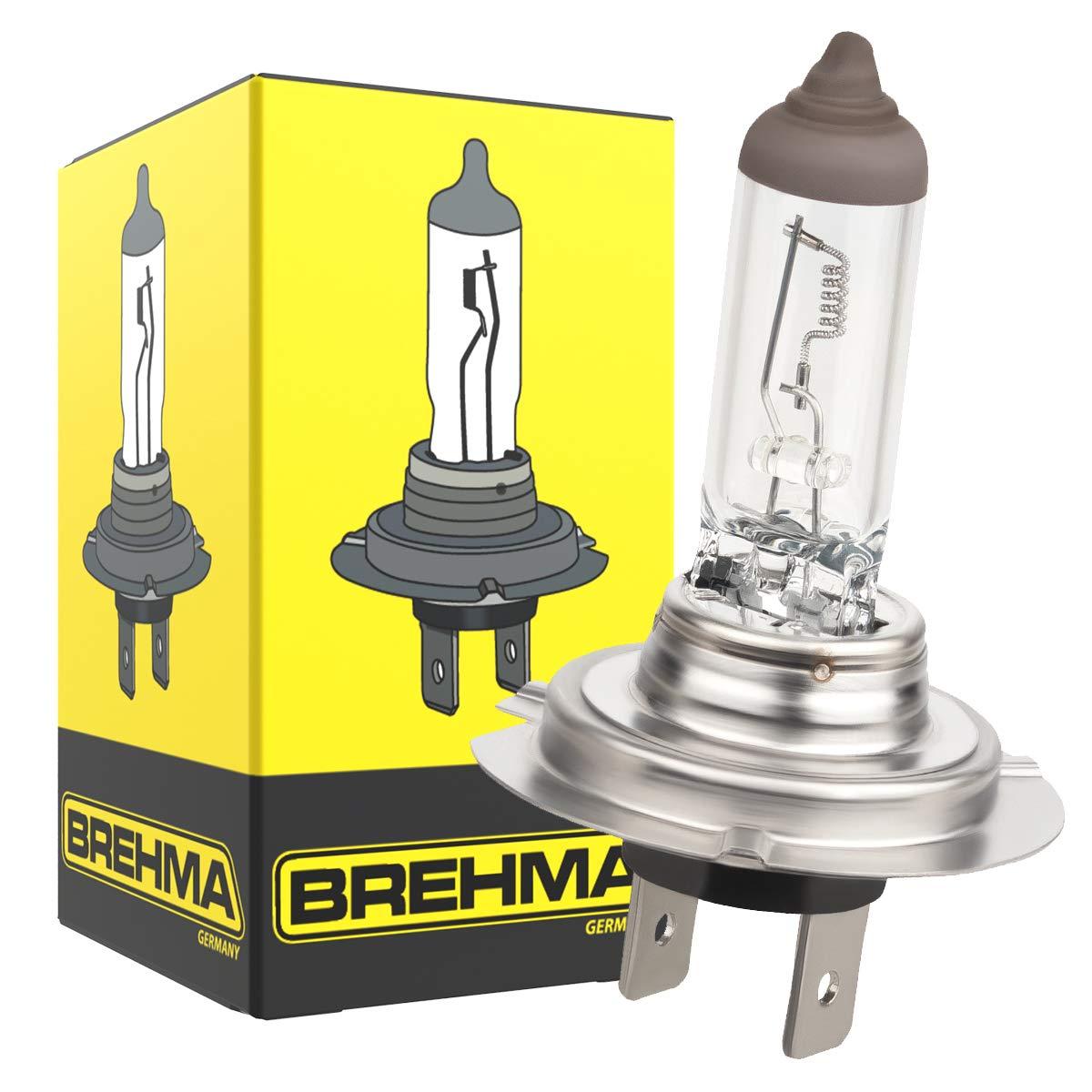Brehma H7 70 W 10 unidades 24 V L/ámparas hal/ógenas