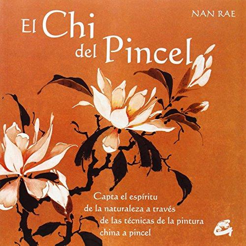 Descargar Libro El Chi Del Pincel Nan Rae